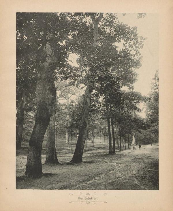 Geschichte der Stadt Bergedorf, Bild 'Das Schießthal'