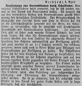 Bergedorfer Zeitung, 5. April 1916